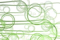Curving Vegetation Winding Vines Stock Image