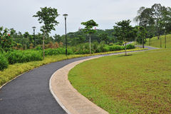 Curving Walking Track Stock Photography