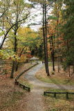Curving walkway with people strolling on pretty Fall day Stock Photography