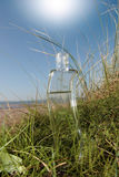 curvy γυαλί μπουκαλιών Στοκ Φωτογραφία