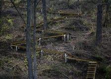 Curvy деревянные лестницы вверх по холму в forrest архитектурноакустическом st стоковые изображения