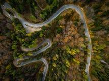 Curvy лес atumn ринва дороги, воздушная верхняя часть вниз с взгляда стоковая фотография