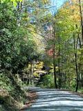 Curvy дорога горы Стоковая Фотография RF