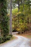 Curvy дорога на после полудня осени стоковые изображения rf