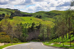 Дорога холмов каньона Стоковые Изображения