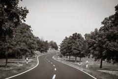 curvy дорога Стоковое Изображение RF