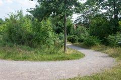 Curvy прогулка в парке стоковое изображение