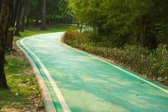 Curvy путь велосипеда для ехать энтузиастов которые желают насладиться ездой природы в известном тайском парке сада Стоковое Изображение RF