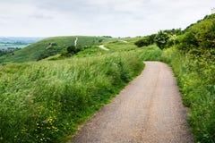 Curvy путь на холмистом ландшафте на пасмурный день стоковая фотография rf