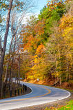 Curvy autumn road. A curvy road climbs uphill in a forest displaying the colors of autumn royalty free stock photos