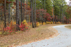 Curvy Autumn road Royalty Free Stock Images