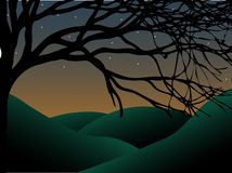Curvy Creepy Tree at dusk with stars and hills Stock Photo