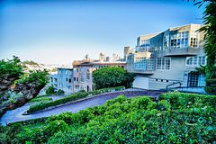 Curvy die lombard straat San Francisco winden royalty-vrije stock foto's