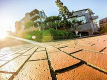 Curvy die lombard straat San Francisco winden stock afbeelding
