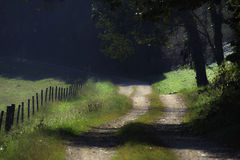 Curvy Dirt Road and Fence Royalty Free Stock Photography