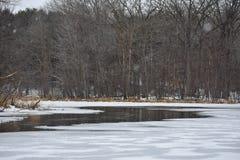 Curvy Fluss Lizenzfreie Stockfotografie