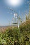 Curvy glass bottle Stock Photography