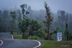 Curvy Himalyan bergväg med högväxta träd som täckas i dimma och en milstolpe royaltyfria foton