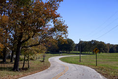 Curvy, leaf covered road Stock Images