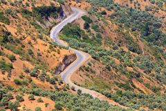 Curvy mountain road, Asphalt road in summer forest,. Morocco lanscape, mountain landscape Royalty Free Stock Photo