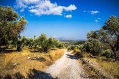Curvy mountain road in Mediterranean mountains Royalty Free Stock Photo