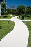 Curvy Path stock image