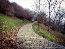 Curvy path. On a hill surrounded by trees bushes stock photo