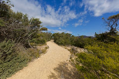 Curvy path to iconic Cape Tourville Lighthouse lookout in Freyci. Curvy path to iconic Cape Tourville Lighthouse lookout. Flat and easy access track with trees Stock Images