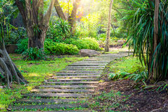 Curvy pathway in a Park Stock Photos