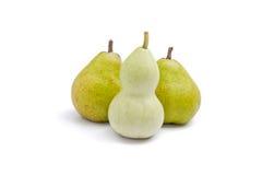 curvy pear för huvuddel som formas vs Arkivfoton