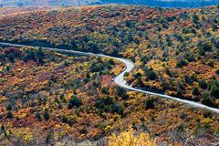 Curvy road. With colorful foliage Royalty Free Stock Photography