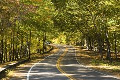 Curvy Road. A curvy winding road lined with trees in the fall royalty free stock photography