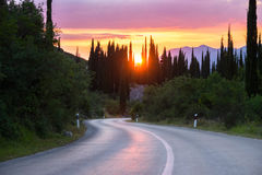 Curvy road in a beautiful landscape of hills and cypress trees Royalty Free Stock Photography