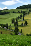 Curvy road with cypress trees in Tuscany Royalty Free Stock Photography