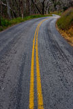 Curvy road with double yellow lines in forrest Stock Photography