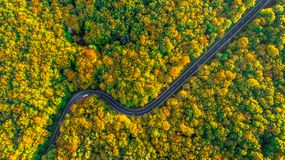 Road trip perfect road winding its way through thick forest. Curvy road in fall colored forest Royalty Free Stock Photography
