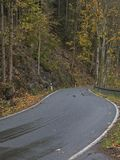 Curvy road in the fall. Curvy road in a fall forest in Germany royalty free stock photos