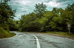 Curvy road in forest. Curvy road in the forest Royalty Free Stock Image