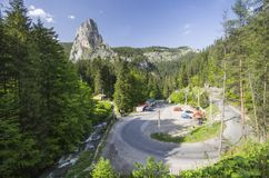 Curvy road through forest Stock Photography