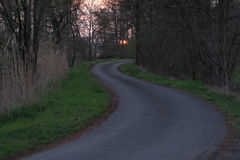 Curvy road in a forest Stock Photo