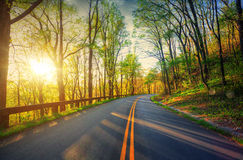 Curvy road. royalty free stock photo