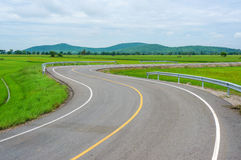 Curvy Road Of Fresh Green in country town Royalty Free Stock Photos