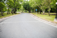A Curvy Road Of Fresh Green Royalty Free Stock Photo