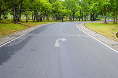 A Curvy Road Of Fresh Green Royalty Free Stock Photos