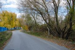 Curvy road between trees in autumn. Seasonal landscape royalty free stock images