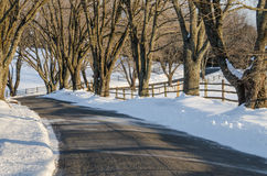 Curvy Road in Winter Royalty Free Stock Photo