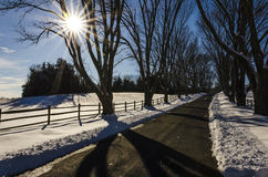 Curvy Road in Winter with Sunlight Stock Photos