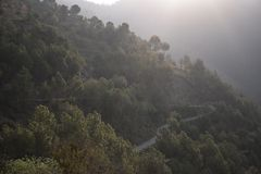 Curvy roads on a mountain slope. Curvy roads on a densely vegetated mountain slope stock images