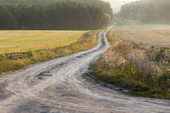 Curvy rural road. Curvy road leads to beautiful early forest Royalty Free Stock Photography