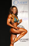 Curvy, Sleek Bodybuilding Babe Stock Photography